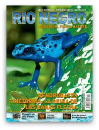 Revista Rio Negro 10