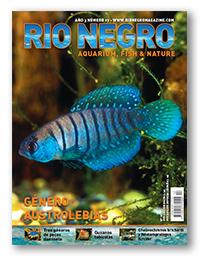Revista Rio Negro 17