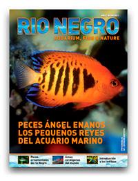 Revista Rio Negro 1