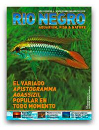 Revista Rio Negro 2