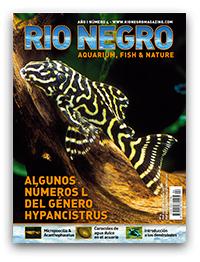 Revista Rio Negro 4