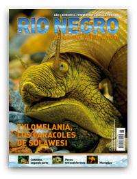Revista Rio Negro 6