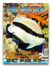 Revista Rio Negro 8