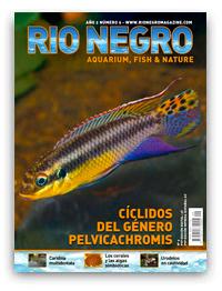 Revista Rio Negro 9