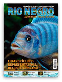 Revista Rio Negro 22