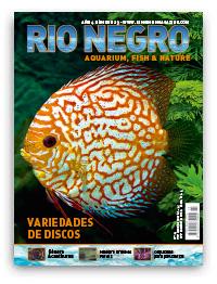 Revista Rio Negro 23
