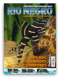 Revista Rio Negro 27